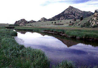 A 8 tarryall creek rocky mountain angling club for Tarryall reservoir fishing